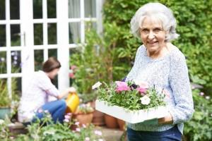 Taschengeldbörse Overath Unterstützung bei der Gartenarbeit